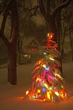 Beautiful love the lights underneath a layer of snow