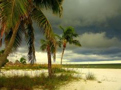 Afternoon storm clouds over the Gulf of Mexico, Fort Myers Beach, Florida Florida Girl, Old Florida, Florida Beaches, Fort Myers Florida, Fort Myers Beach, Sanibel Island, Sanibel Beach, Palm Trees Beach, Beyond The Sea