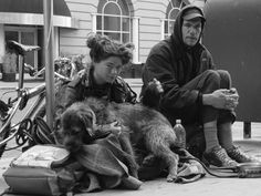 The Dogs Of Homeless People