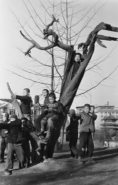 Photographer: Han, Young-Soo Majority of his photo is concerned about ordinary korean people after korean war. Quite sensitive&sort of sharp modernism in everywhere.