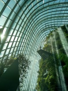 The most beautiful things i have seen indoors: Gardens by the Bay, Singapore Singapore Garden, Singapore Travel, Singapore Architecture, Amazing Architecture, Contemporary Greenhouses, Places To Travel, Places To See, Travel Destinations, Life Is Beautiful