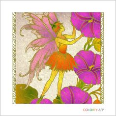 Colorfy using spring and custom palettes