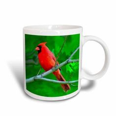 3dRose Red Cardinal, Ceramic Mug, 11-ounce