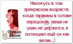 https://pp.vk.me/c622329/v622329123/15c6e/1LMAmjfeye0.jpg
