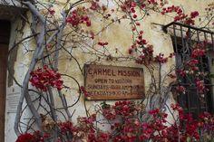 90 Best Carmel Cottages images | Carmel by the sea ...