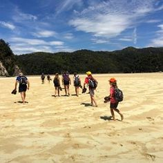 Warm golden sands of Abel Tasman National Park, a wonderful place to take the whole family for a walk and a swim #familyholiday