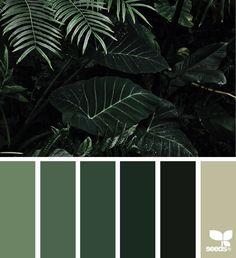 { color jungle } image via: @mijn.grid