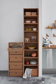 all carton furniture: shelves