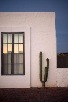Desert minimalism