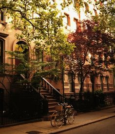 Greenwich Village - this is where I would live in NYC.