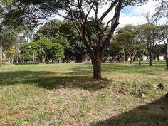 Terreno atrás do Castelinho, em Ponta Porã - MS, divisa com o Paraguai.