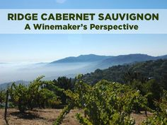 Taste Ridge Monte Bello, and you'll begin to understand why it's one of California's most collectible Cabernet Sauvignons. In this video, winemaker Paul Draper describes the key aspects of making this wine.