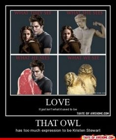 funny twilight pictures