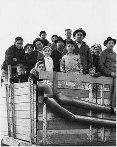 Truckload of cotton pickers, Pima, Arizona, ca. 1940, Dorothea Lange