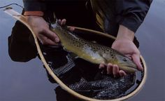 Video: Autumn in New England - Orvis News