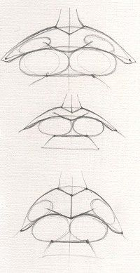 Top Tips, Tricks, And Techniques For The Perfect drawing tips Anatomy Sketches, Anatomy Drawing, Anatomy Art, Art Drawings Sketches, Eye Drawings, Art Illustrations, Pencil Drawings, Eye Drawing Tutorials, Drawing Techniques