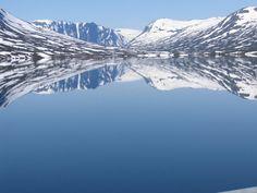 Twitter / pimscho: @Wereldpics Dovrefjell, Noorwegen ...