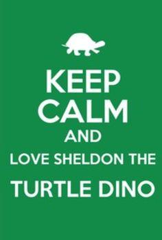 Keep calm and love sheldon the dinosuar turtle