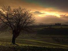 Imagem Natureza