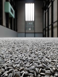 Ai Weiwei. These are not sunflower seeds - they're porcelain replicas. 500.000 million of 'em.