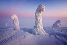 Lapland, Finland | 25 Places That Look Not Normal, But Are Actually Real