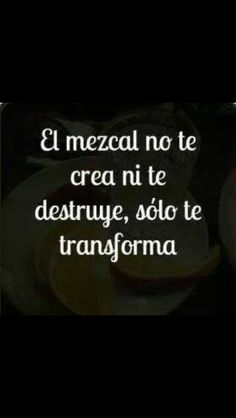 #mezcal Best Tasting Liquor, Food Quotes, Funny Quotes, Tequila Quotes, Mezcal Tequila, Mexican Drinks, Agaves, Funny Phrases, Wine And Beer