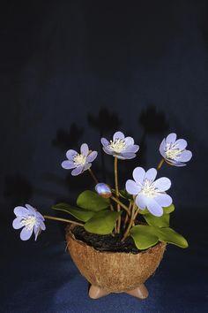 My clay flower https://www.facebook.com/Csodavirag