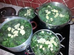 Wino z pokrzywy Homemade Alcohol, Palak Paneer, Ethnic Recipes, Food, Alcohol, Eten, Meals, Diet