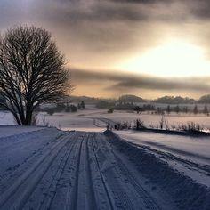 Norway!!!