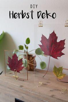 Der Herbst ist da und damit zieht auch wieder die Gemütlichkeit in die Wohnung! Und damit dafür auch richtig dekoriert ist, gibt es jetzt ein DIY Tutorial wie ihr diese schöne Blätterdeko mit Glas basteln könnt. Blätter sind einfach das Beste im Herbst :)