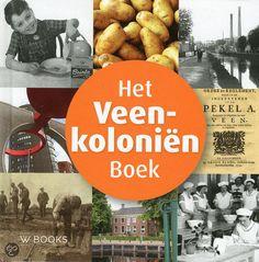 Het Veenkolonien boek / Hillenga over Groningen en Drente