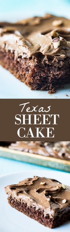 This larger than life chocolate cake is INCREDIBLY moist, full of flavor, plus it's topped with a fluffy, whipped chocolate ganache frosting. Made to serve a crowd, this easy to make dessert recipe for chocolate sheet cake is sure to please!