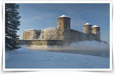 Linnasta linnaan, tietosivusto suomalaisista ja venäjäisistä linnoista. Castle Pictures, Medieval Castle, 12 Year Old, Historian, Ancient History, Geography, Finland, Castles, Monument Valley