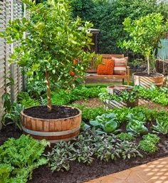 Create a gorgeous backyard getaway and have your edibles garden as well. Click thru for detailed instructions...