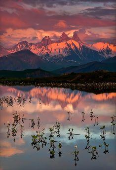 ~~Sunset on Guichard Lake ~ water clovers and beautiful sunset on Lake Guichard, Saint-Jean-d'Arves, France by Joris Kiredjian~~