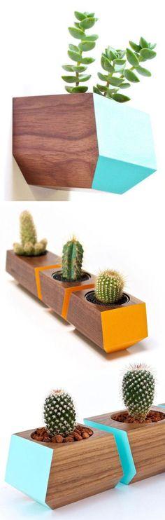 Walnut Cube Planters // Cute! #succulents #cactus #airplants