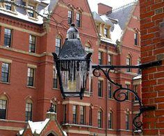 Winter in Harvard Yard Boston Beans, Harvard Yard, Cambridge Boston, Boston Architecture, Ivy League Schools, Massachusetts Usa, Ivy Style, Boston Area, Harvard University