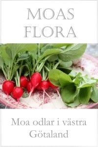 Moas Flora