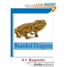 Free today 8.6.2013 Bearded Dragon: All about bearded dragons, fun facts for kids and adults