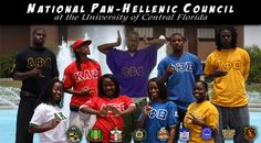 african american panhellenic council | Greek Councils » Fraternity & Sorority Life » UCF