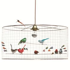 French Bird Pendant Light, Sydney | Elements i love...