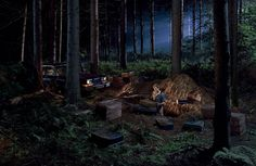 Crewdson-Gregory-Untitled-man-in-the-woods-2003.jpg (1408×916)