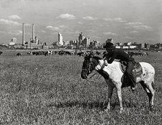 Dallas, Texas, year 1945.Skyline, Cowboy, Horseback.Vintage Texas photograph.Old Texas art print. by Chromatone on Etsy