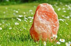 We are one of the best manufacturer,wholesale and exporter of pink himalayan rock salt products in Pakistan. Deals in natural salt lamps,plates,candle holder, and much more. Budweiser Commercial, Sources Of Iodine, Iodized Salt, Celtic Sea Salt, Natural Salt, Salty Foods, Himalayan Salt Lamp, Horses, Salt