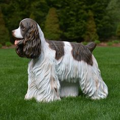 Life size Cocker Spaniel dog statue stands over 15 inches high.  This realistic portrait of the Cocker Spaniel stands poised to please.  Made of chip resistant fiberglass for indoor or outdoor use.  $179.00