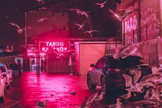 Nighttime City Scenes Bathed in Neon by Photographer Elsa Bleda Photography Photographer Elsa Bleda captures hazy moments that linger o. Pink Tumblr, Roses Tumblr, Nocturne, Neon Aesthetic, Maroon Aesthetic, Colossal Art, Elsa, Neon Glow, City Scene