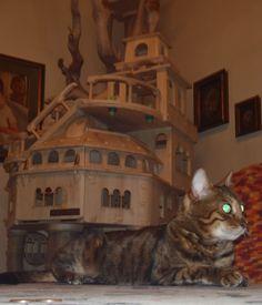 La Bellissima Frida E Il Suo Castello #luxury Cat Castle #cat Tower #cat
