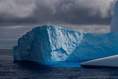 Iceberg, Antarctica   - Explore the World with Travel Nerd Nici, one Country at a Time. http://TravelNerdNici.com