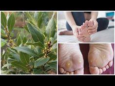 Η δάφνη φεύγει-Ξεφορτωθείτε τους κάλους και το κότσι με ένα απλό αλλά ισχυρό, φυσικό φάρμακο! - YouTube Health Remedies, Pain Relief, Natural Remedies, The Creator, Herbs, Jewellery, Nails, Finger Nails, Jewels