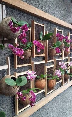 Spring Hanging Herb Garden Ideas For Your Frontyard 18 Space is premium and luxury. One thing you can do is by hanging your herbs. Hanging herbs can be hanged both from wall or ceiling. Orchid Planters, Orchids Garden, Garden Plants, House Plants, Orchid Terrarium, Veg Garden, Vertical Wall Planters, Vertical Gardens, Outdoor Planters